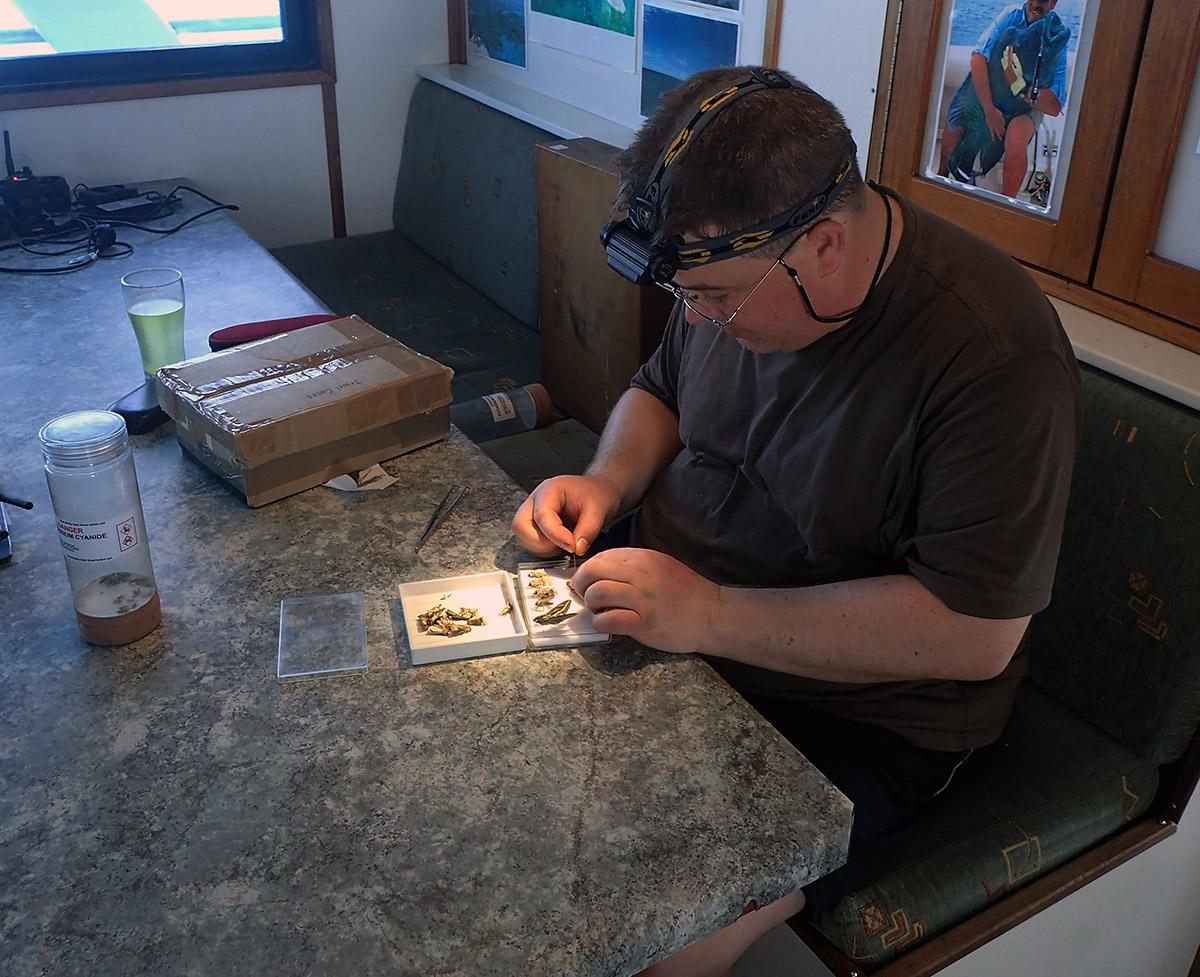 Andreas sorting and pinning moths