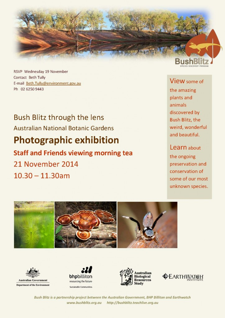 BB photographic invitation draft