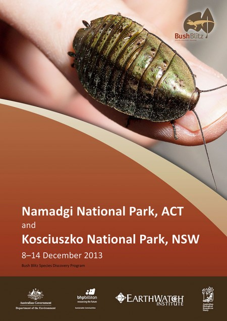 ACT NSW 2013