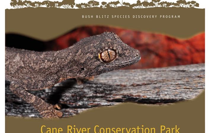Cane River Conservation Park WA 2011