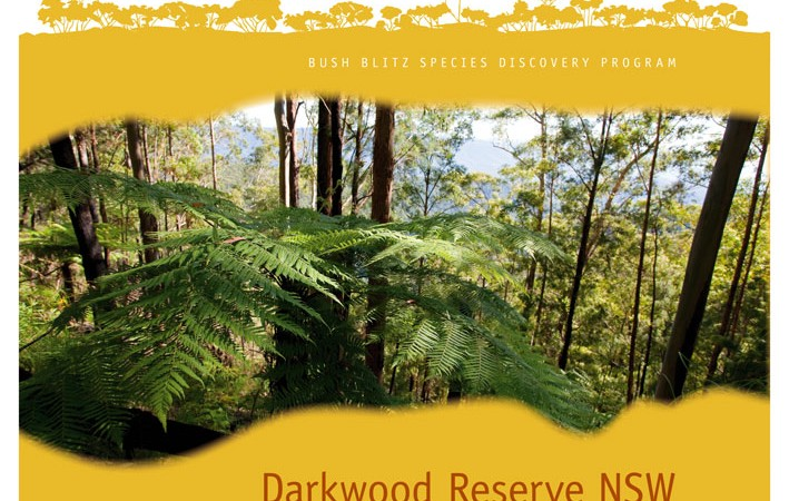 Darkwood Reserve NSW 2010