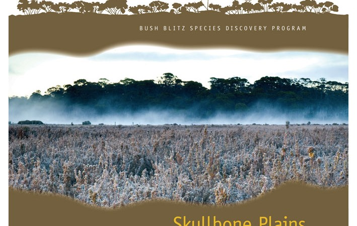 Skullbone Plains TAS 2012