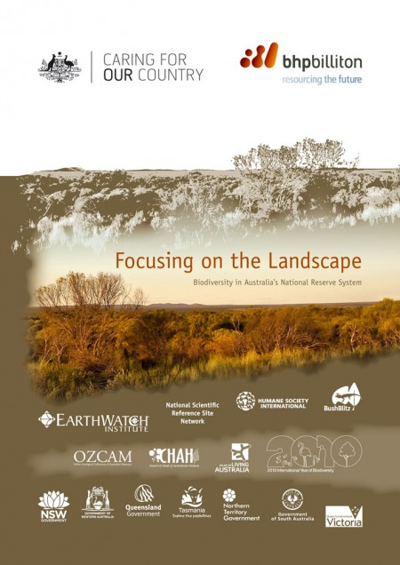 Focusing on the landscape