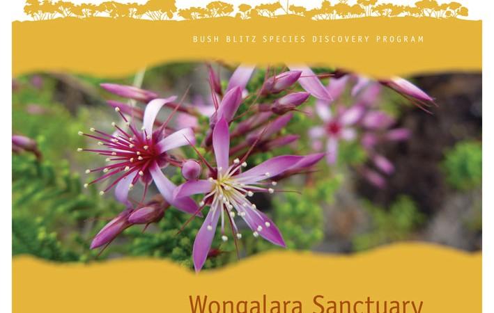 Wongalara Sanctuary NT 2012