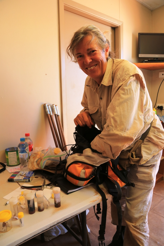 Dr Barbara Baehr, arachnologist, returns from a dune in the Great Sandy Desert with an exciting find.