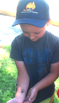 "This brave lad found the placid orb spider less ""creepy"" than he originally thought."