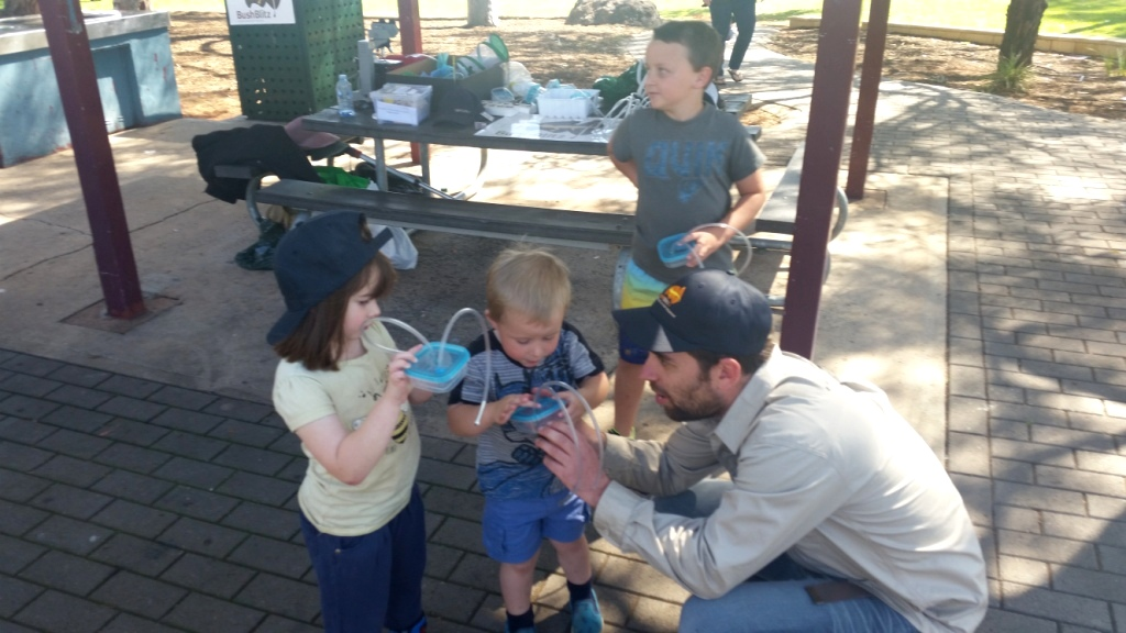 Matt helping some budding entomologists with their equipment
