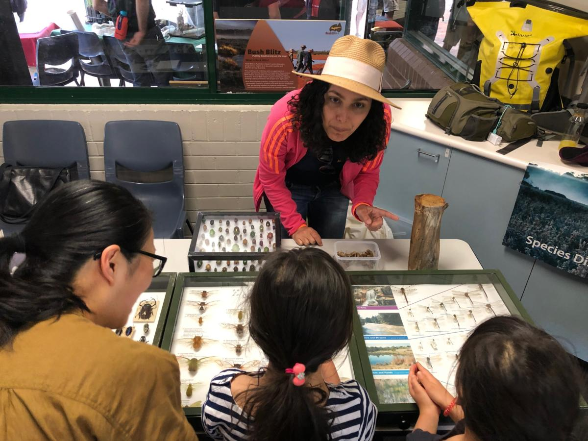 Dr Olivia Evangelista from CSIRO explaining the secret lives of Christmas Beetles to some budding scientists