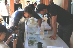 Damien Wrigley of Bush Blitz and locals try to ID some marine creatures © J Harding