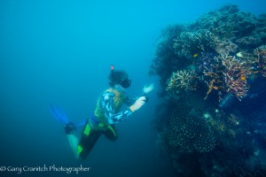 Merrick Ekins studying soft corals